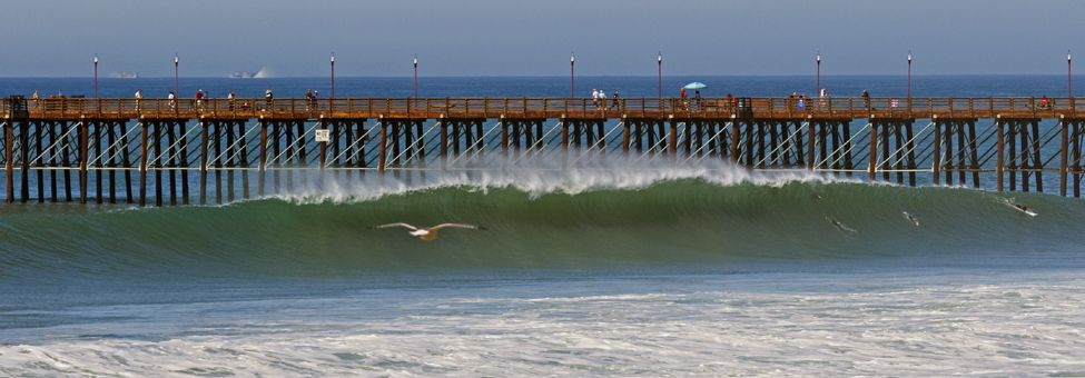 SURFING IN SOUTH CALIFORNIA
