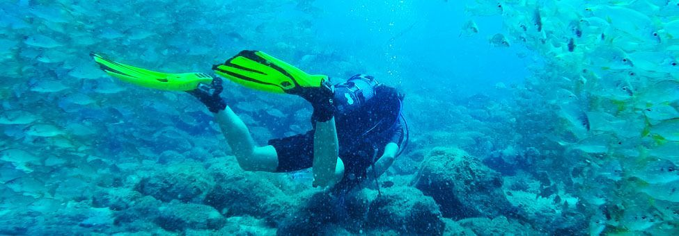DIVING & SNORKELING IN TENERIFE