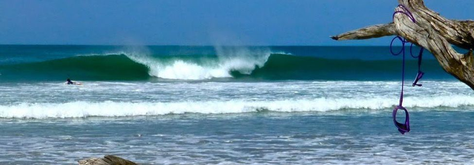 SURFING IN TAMARINDO