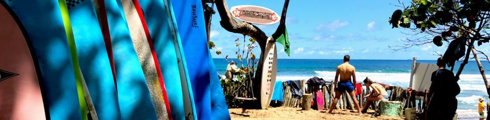 Cabarete Surf Camp Group Departure